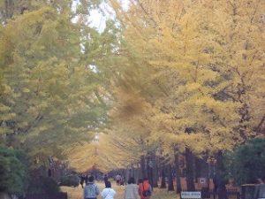 紅葉狩り 天童運動公園
