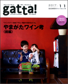 gatta201711