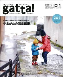 gatta201801