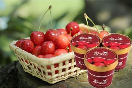 cherry01
