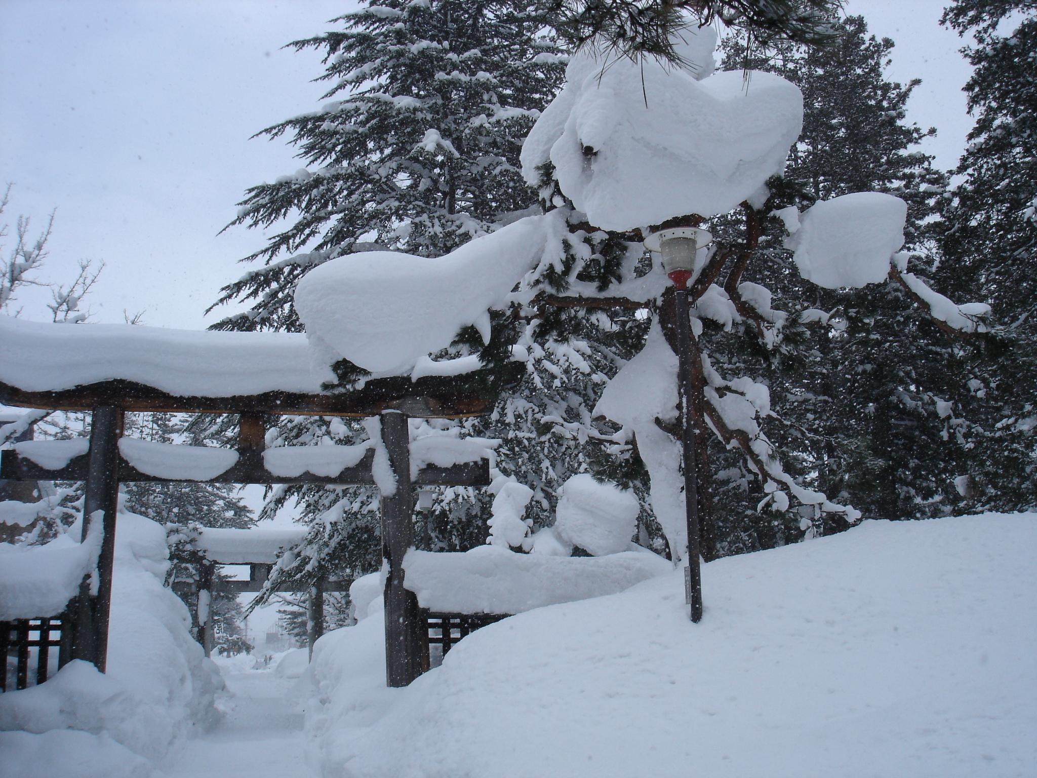 2006年1月 米沢