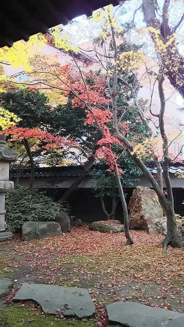 丙申堂(鶴岡市)
