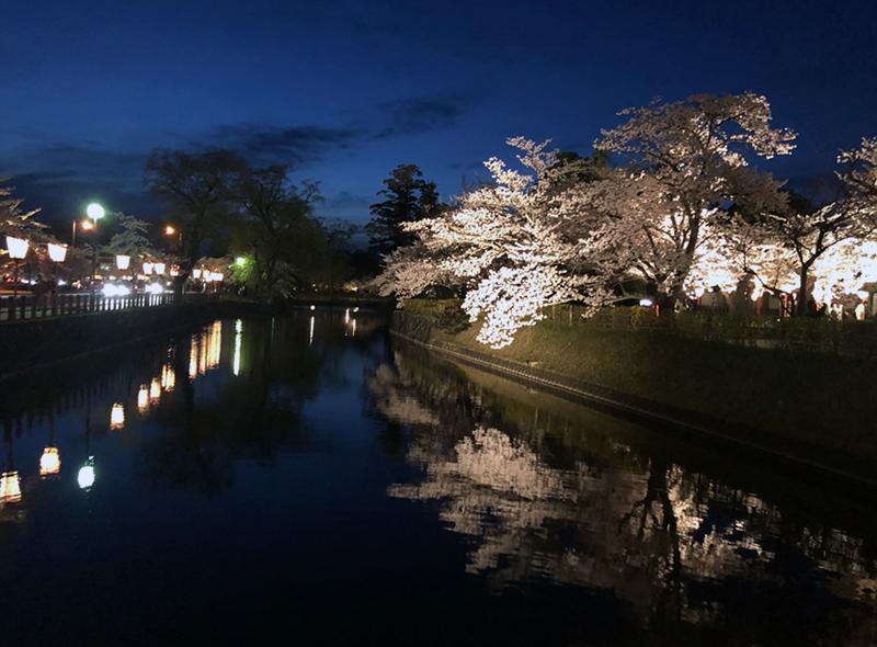 鶴岡市 鶴岡公園 夜桜