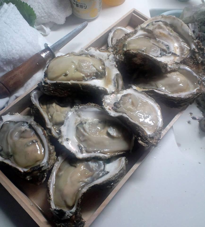 庄内 夏の岩牡蠣